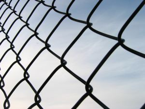 wire fence 1