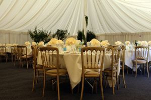 wedding-reception-1097369-m