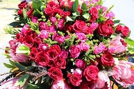 flowers-660666__180