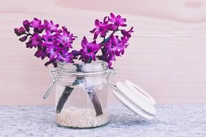 Kwiaciarnia Tychy